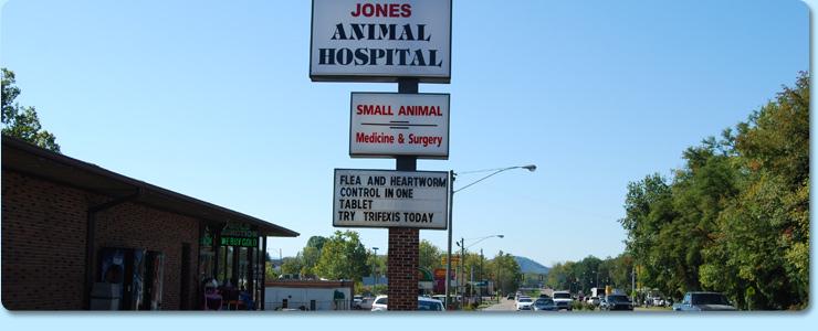 Contact Jones Animal Hospital